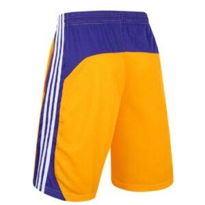 Заказать поиск шорт Los Angeles Lakers с бесплатной доставкой
