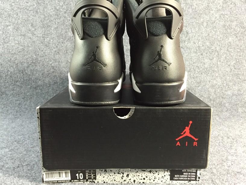 Air Jordan 6 Black Cat-2