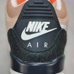 Air Jordan 3 Retro JTH NRG Bio Beige 24