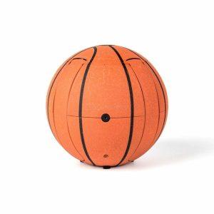 Заказать поиск квадрокоптераQuadcopter Smart Drone Basketball