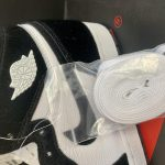 Wmns Air Jordan 1 Retro High OG Twist 9