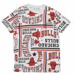 2019 Chicago Bulls Tee NBA Series
