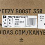 Yeezy Boost 350 V2 Antlia Non-Reflective-44