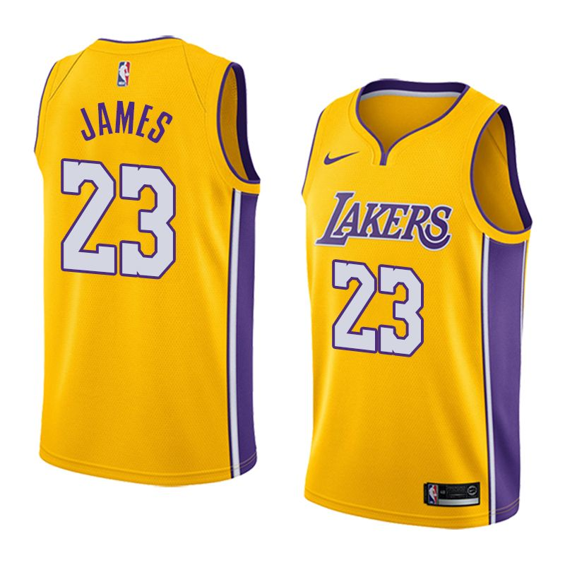 2018-19 LeBron James Los Angeles Lakers #23 Icon Gold