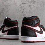 Air Jordan 1 Retro High OG Bloodline-5