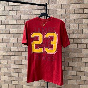 2020 NBA Cleveland Cavaliers James 23 Vinous 1
