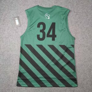 2020 Milwaukee Bucks Antetokounmpo 34 Green Shirt 1