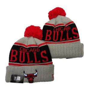 2019 NBA Chicago Bulls Red Grey Hat