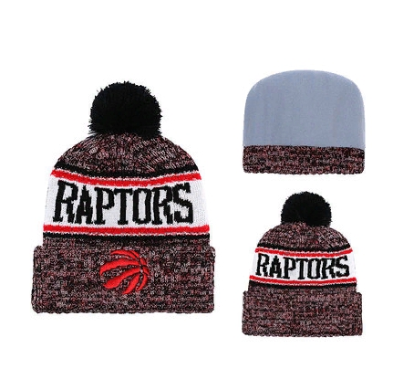 2019 NBA Toronto Raptors Vinous Hat