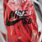 Supreme x Nike Dunk SB Low Varsity Red 13