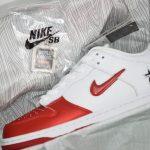 Supreme x Nike Dunk SB Low Varsity Red 19