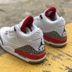 Air Jordan 3 Retro GS Hall of Fame 5