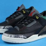 Air Jordan 3 Retro SE Animal Instinct 2.0 5