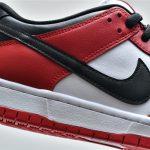 Nike SB Dunk Low J Pack Chicago 10