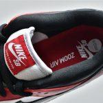 Nike SB Dunk Low J Pack Chicago 15