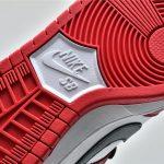 Nike SB Dunk Low J Pack Chicago 17