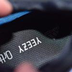 adidas Yeezy 700 V3 Arzareth 15