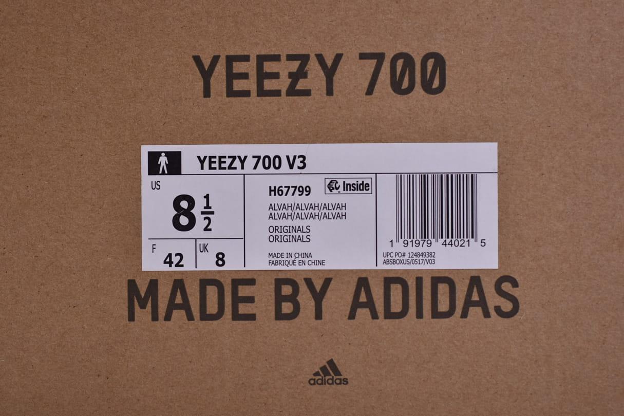 adidas Yeezy 700 V3 Arzareth 2