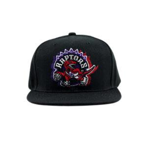 Team Ground Snapback Toronto Raptors 1