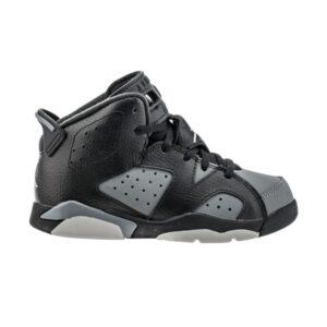 Air Jordan 6 Retro PS Cool Grey