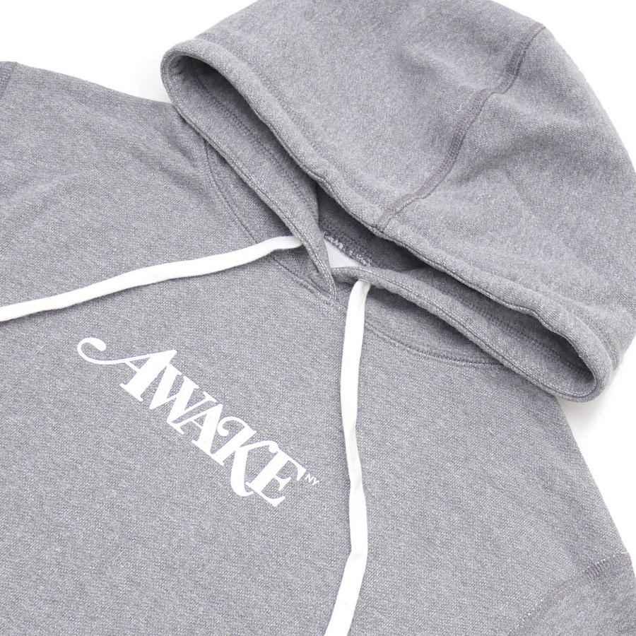 Awake Metallic Foil Logo Hoodie Gray 1