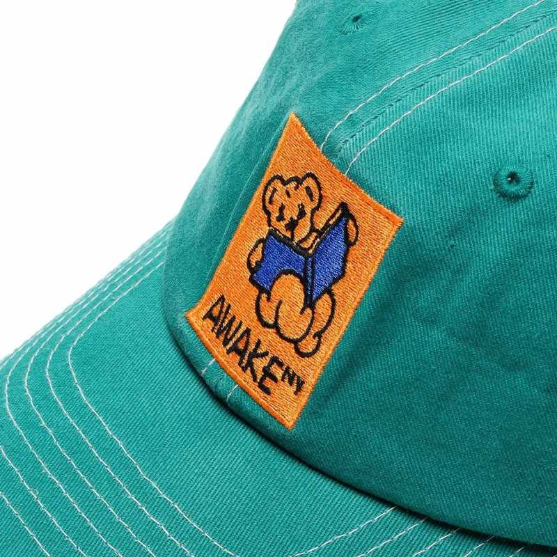 Awake Teddy Hat Teal 3
