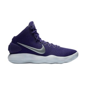 Nike Hyperdunk 2017 TB Court Purple